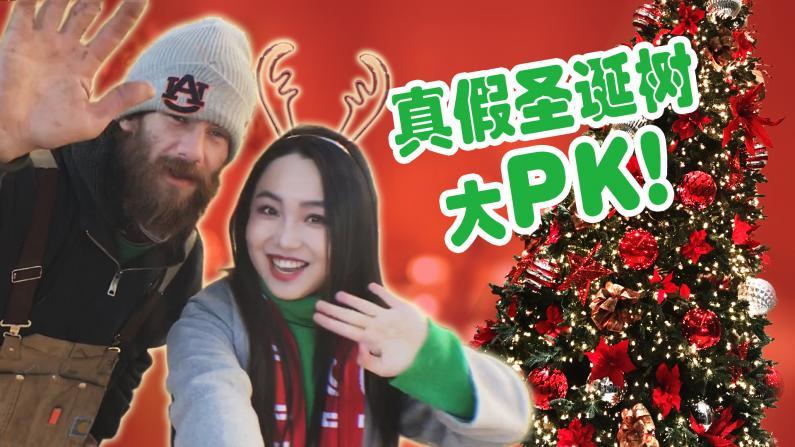 【家装帮帮帮】真假圣诞树大PK!圣诞树装饰推荐拿走不谢!