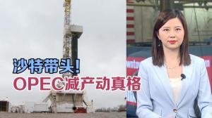 """直击华尔街聚焦:沙特带头 OPEC减产""""动真格""""!"""