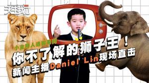 你不了解的狮子王!新闻主播Daniel Lin现场直击