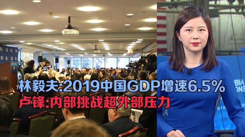 林毅夫预测中国2019GDP增速6.5% 卢锋警示中国经济内部挑战