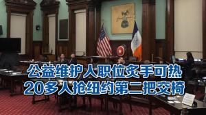 2/26特殊选举一轮定胜负  二十多人争纽约市公益维护人