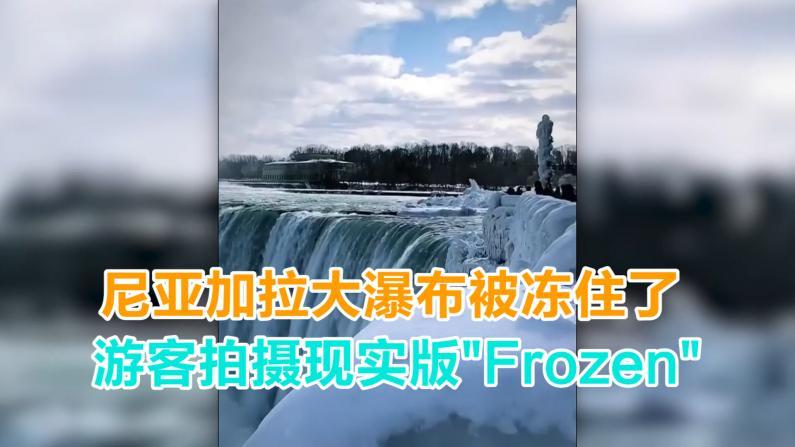 """尼亚加拉大瀑布被冻住了 游客拍摄现实版""""Frozen"""""""