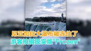 """尼亚加拉大瀑布被冻住了 游客拍摄现实版""""Frozen"""