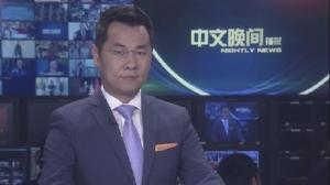 2019年02月01日中文晚间播报