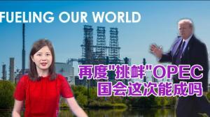 再次挑衅OPEC 国会这次能成吗