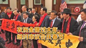 纽约市议会庆农历猪年新春