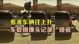 """看准车辆往上扑 车载摄像头记录""""碰瓷"""""""