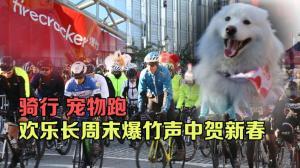 """洛城华埠第41届""""爆竹行动"""" 超9000人长周末共聚迎新春"""