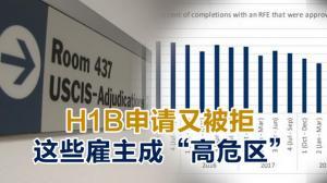 """H1B申请又被拒 这些雇主成""""高危区"""""""