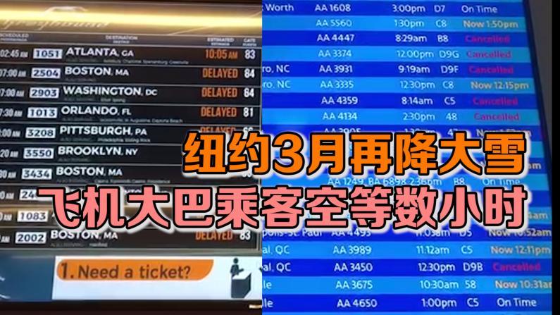 纽约3月再降大雪 飞机大巴乘客空等数小时