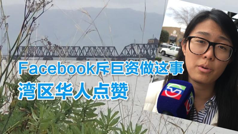 Facebook谋划跨湾交通新路线 华人点赞:受够堵车了!