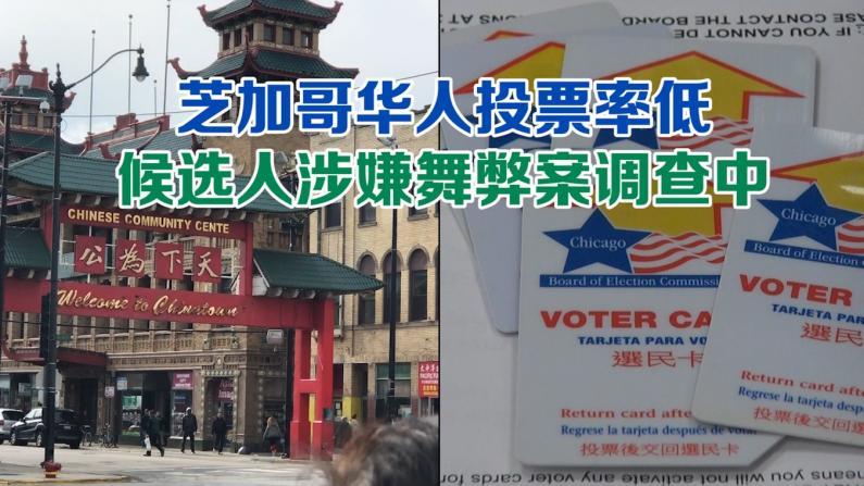 芝加哥华人投票率低 候选人涉嫌舞弊案调查中