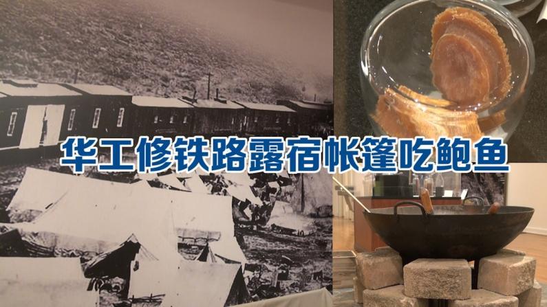 150年前华工在美修铁路露宿帐篷吃鲍鱼