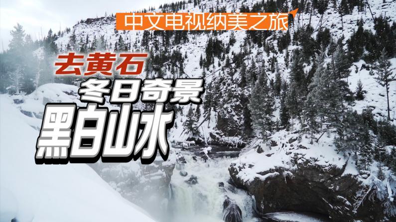 黄石之行:国家公园陌生的冬景