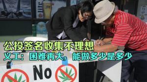 第二波反麻公投截止仅剩8天 义工忙收集签名