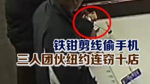 铁钳剪线偷手机 三人团伙纽约连窃十店