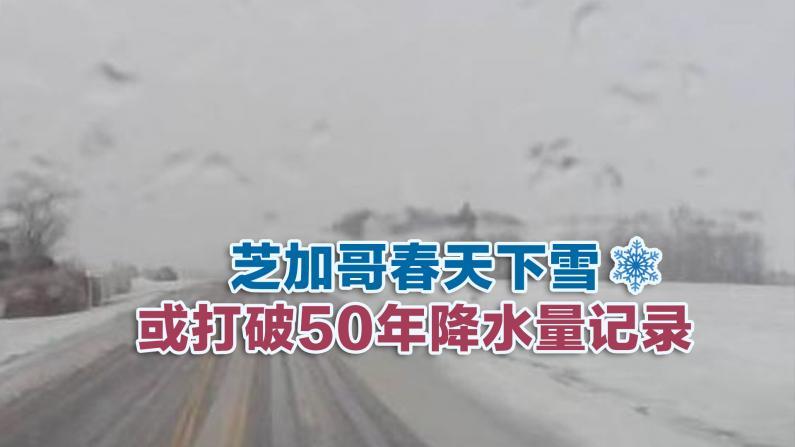 芝加哥春天下雪 或打破50年降水量记录