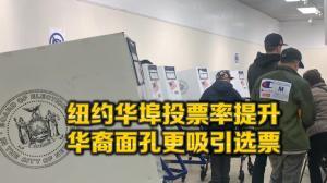 2018中期选举选民报告出炉 纽约华埠摆脱投票率倒数窘境