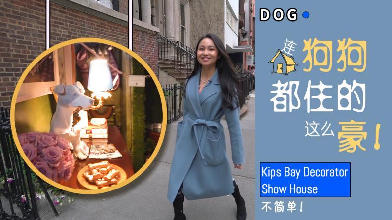 【乐活视频】连狗狗都住的这么豪!Kips Bay Show House不简单