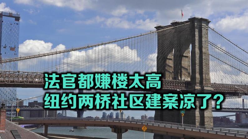 纽约两桥社区建案庭讯 民众: 80层高楼或毁社区