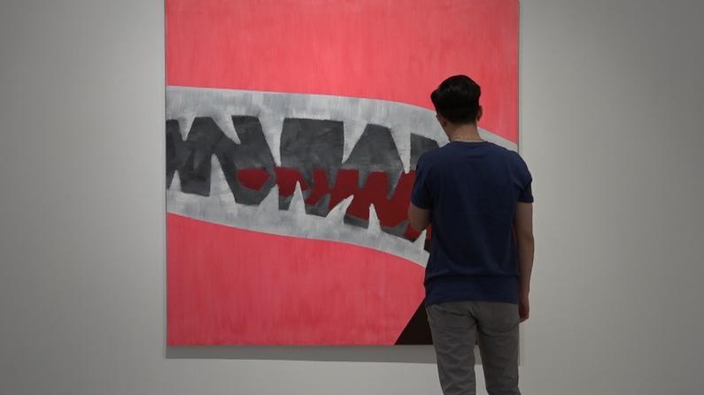 """华人当代艺术家用""""鲨鱼""""征服休斯敦最大画廊"""