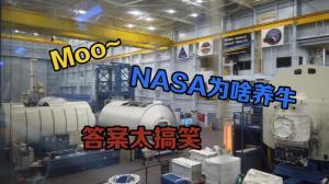太空人如何便便?NASA为啥养牛? 亲测NASA的秘密