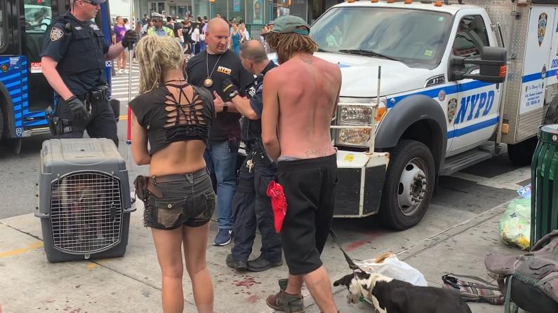 """狗打架引发的暴力事件? """"游民问题迫在眉睫"""""""