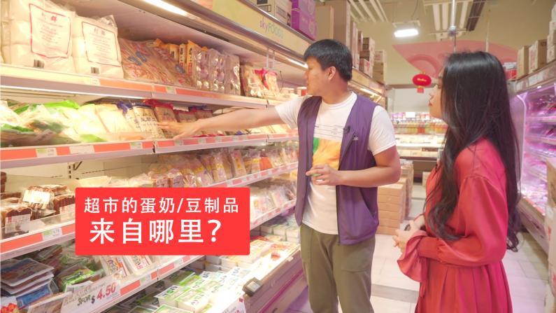 华人超市的蛋奶及豆制品都来自哪里?
