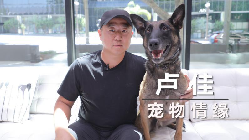 【洛城会客室】卢佳:狗狗的心思我都懂!