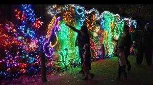 """有""""味道""""的灯展 休斯敦动物园4D灯光秀开启节日季"""
