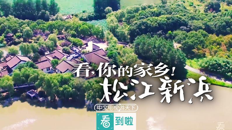 家乡新模样:新浜素称江南芙蓉镇
