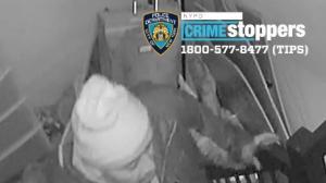 节日季临近 纽约布鲁克林入室盗窃案频发!