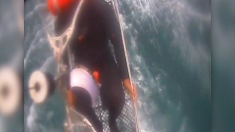 鲨口逃生!南加冲浪者被鲨鱼咬伤大腿