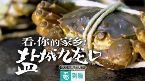 家乡新模样:品牌河蟹,经典鱼米之乡