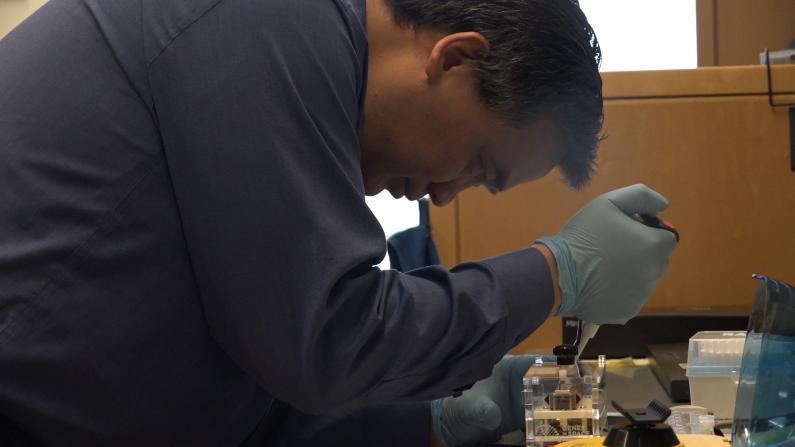 """""""这是最快捷的特效药""""参与SARS埃博拉研究的美国专家观点"""