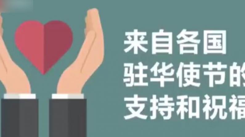 """各国驻华大使录视频支持中国抗""""疫"""""""
