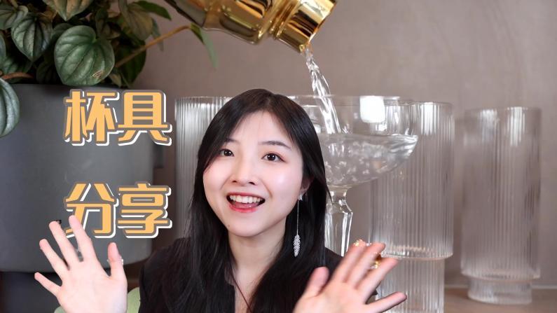 【索菲亚一斤半】酒杯这么多,到底选哪款?良心杯子推荐!