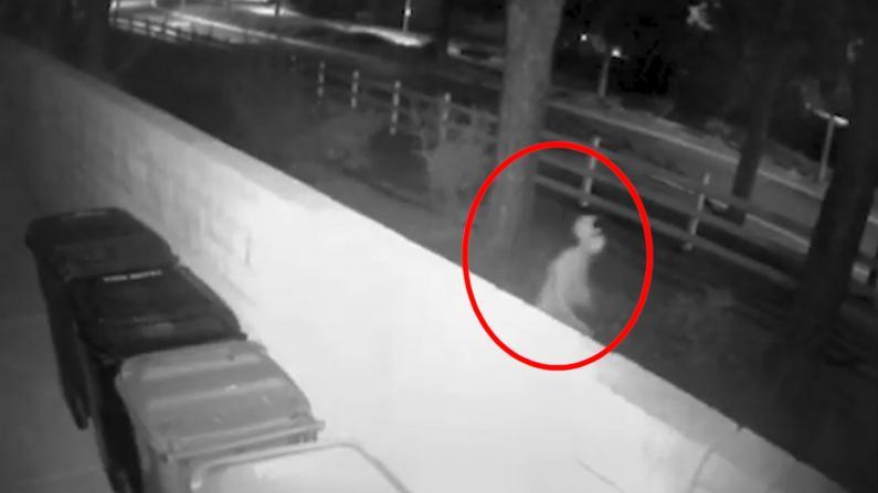 南加华裔母女命案 警方公布可疑男子视频