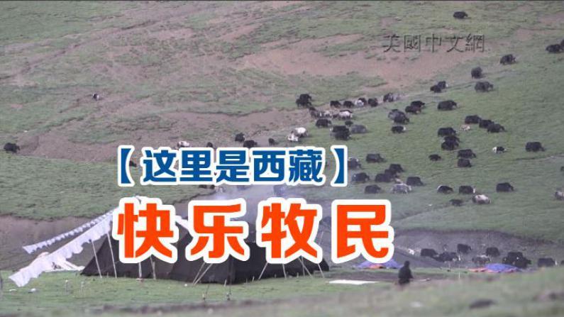 这里是西藏-快乐牧民