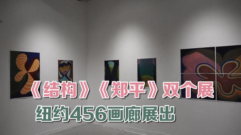 《结构》《郑平》双个展纽约456画廊展出