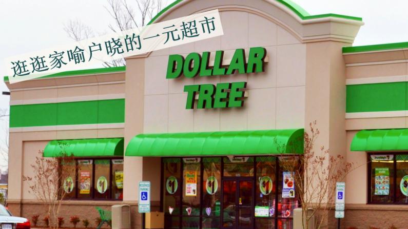 【北卡徐阿姨】Dollar Tree卖东西这么便宜 是怎么活下来的?