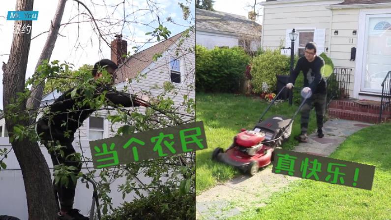 【纽约老尤】剪草修树 我在美国当农民的一天