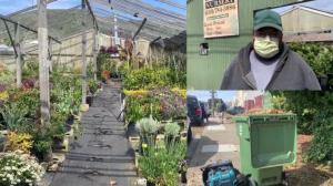 """旧金山湾区新""""居家令""""首日 苗圃主复工:停业两月很难熬"""