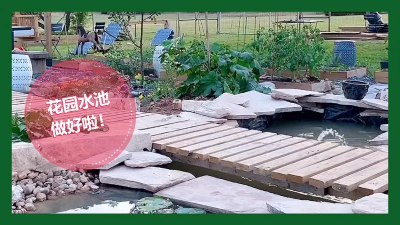 【德州田园生活】给花园挖个池塘!拓展完工!