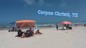 【北美臭鱼】实拍:看海散心 德州海滩现在什么样?