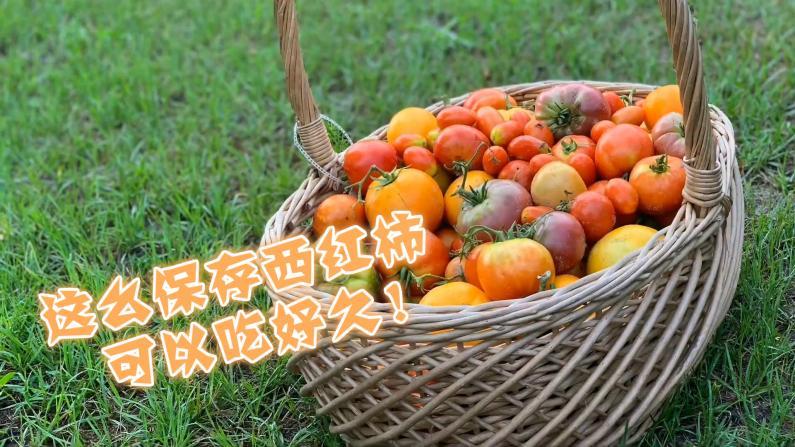 【Lisa的菜园】美国南部西红柿罐头做法 放一两年都不会坏!