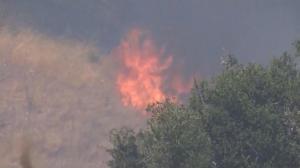 南加山火又起 过火面积超600英亩