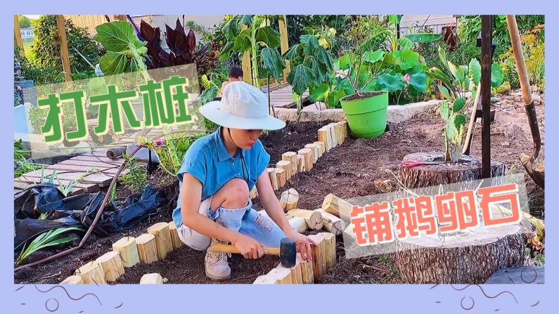 【德州田园生活】打木桩铺鹅卵石 再造花园小径