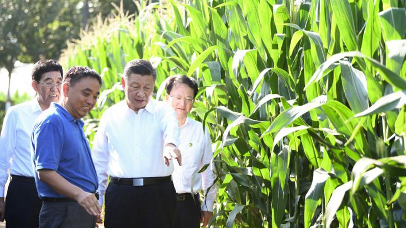 习近平在吉林考察:因地制宜 走好农业合作化道路