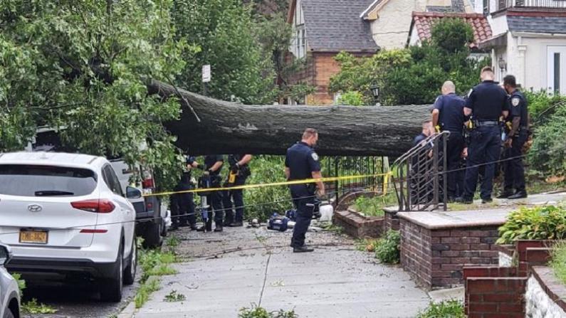 伊赛亚斯过境纽约 狂风吹倒大树砸中汽车 皇后区一人身亡